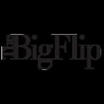 The Big Flip Documentary